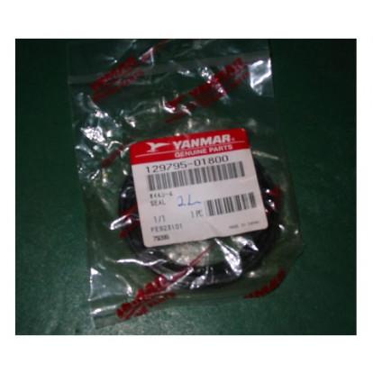 Oil Seal 129795-01800
