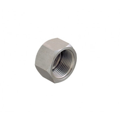 """Plug Female Stainless Steel 3/4"""""""