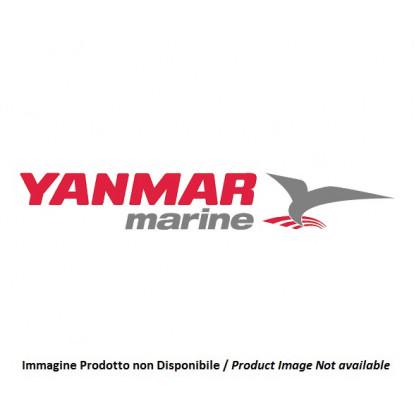 Damper Disk 129673-81150