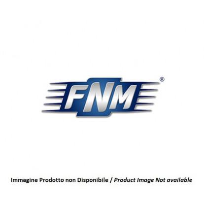 Fuel Filter (Gasoil) 2.006.001.1
