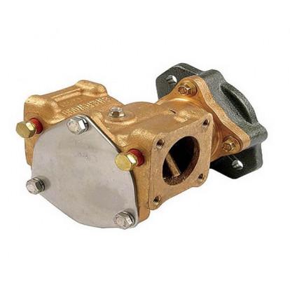 Pompa Raffreddamento Motore P1710C